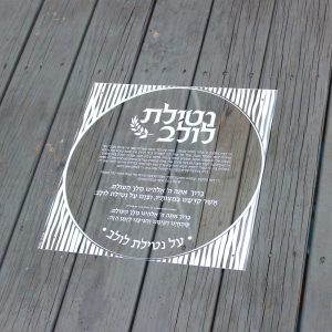 Lucite Sukkot Decoration - Netilat Lulav Black